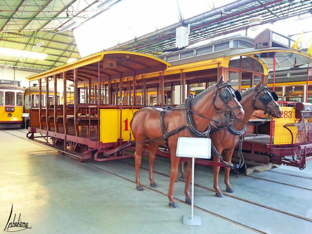 réplique americano musée carris
