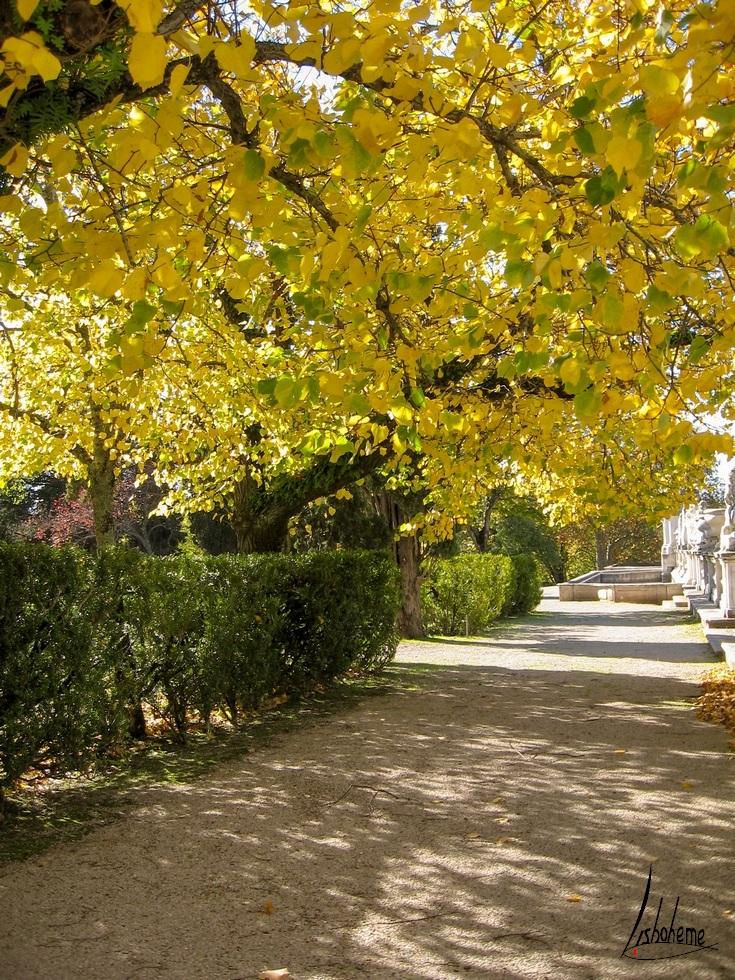 Jardins, Palais de Queluz à Sintra, près de Lisbonne, Portugal